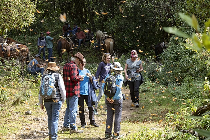 Tourists on the way to Cerro Pelon, Mexico to see monarch butterflies.